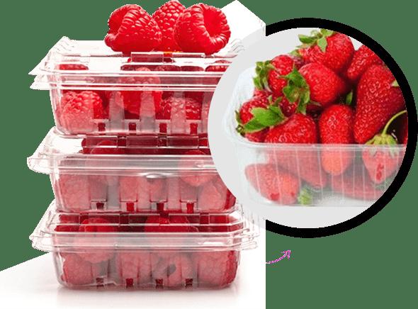 rigid-containers-image